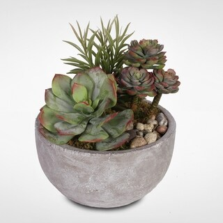 Artificial Succulents with Natural Pebbles in a Cement Bowl