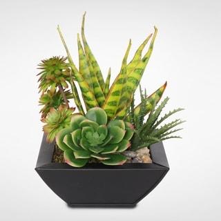 Artificial Tropical Succulents in a Black Zinc Metal Pot