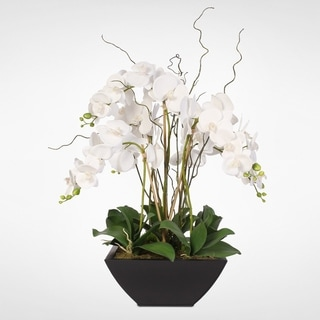 Real Touch White Phalaenopsis Orchids in a Black Metal Zinc Pot