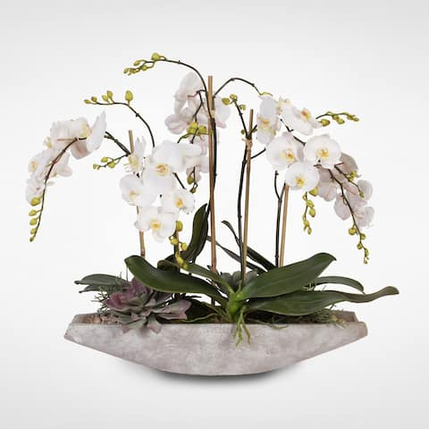 Real Touch White Phalaenopsis Orchids in a Stone Boat Pot