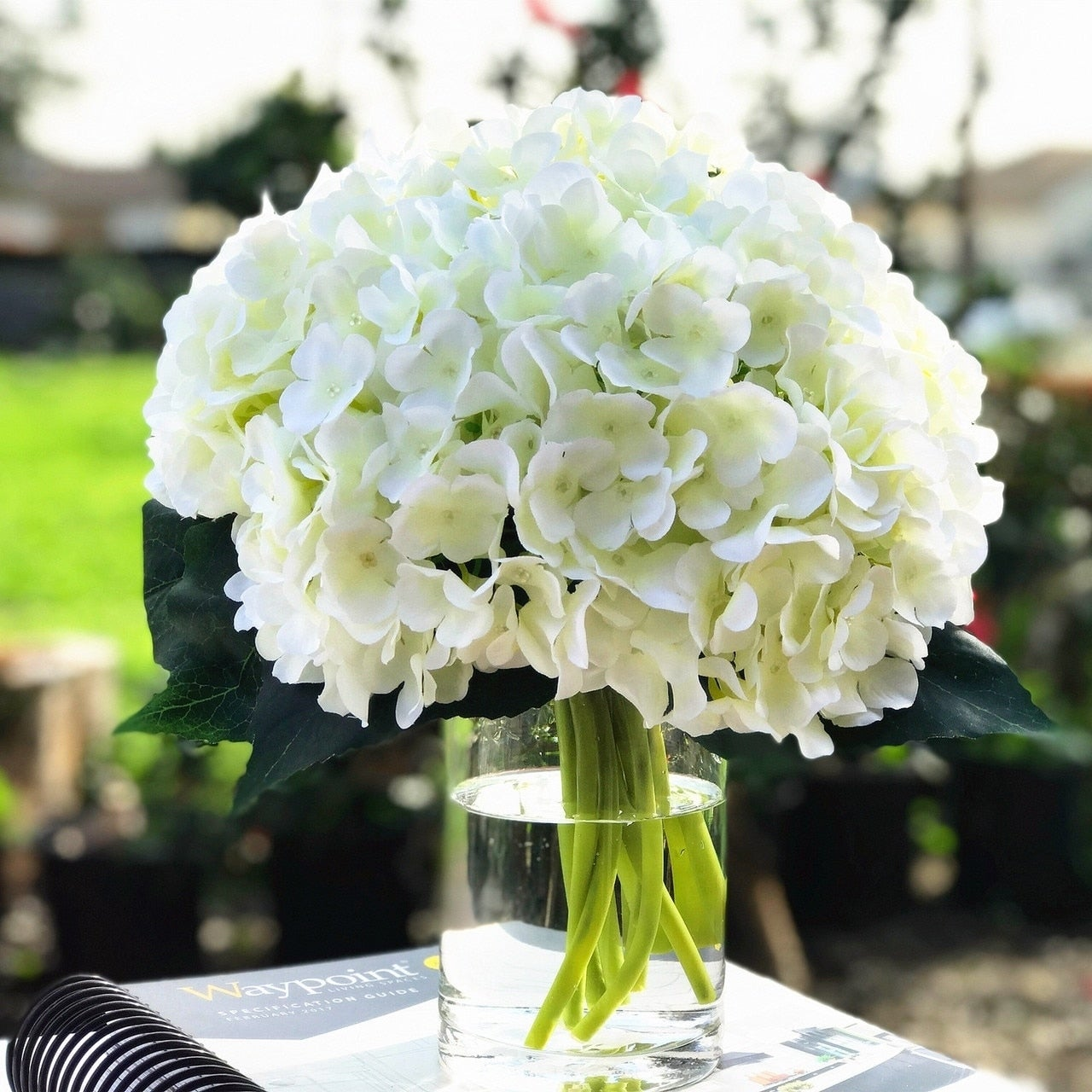 Enova Home Cream Artificial Hydrangea Flower Arrangements with Clear Glass Vase
