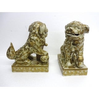Cream & Gold Scroll Pattern Foo Dogs (Pair)