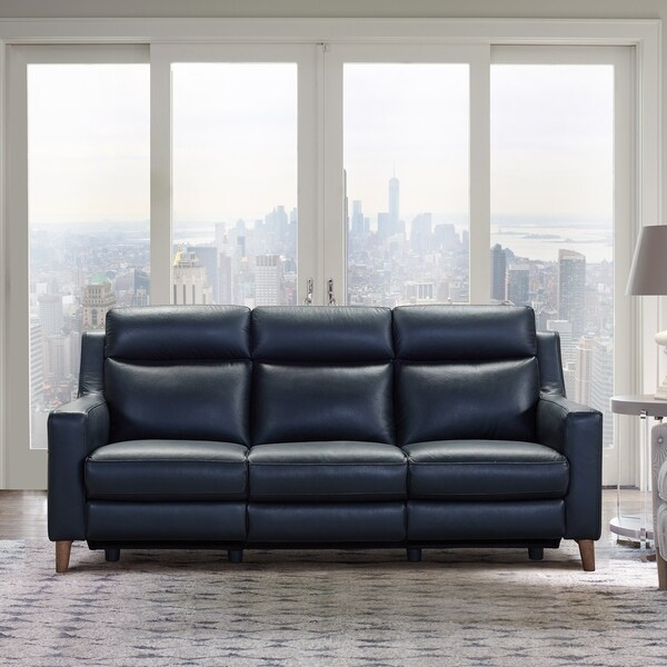 Chance Genuine Leather Contemporary Sofa