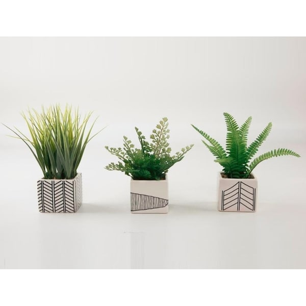 Set of 3 ferns and grass in chevron pots