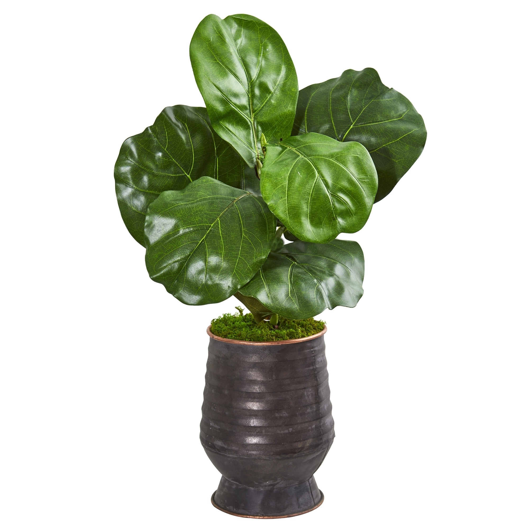 24 Fiddle Leaf Artificial Plant in Decorative Planter