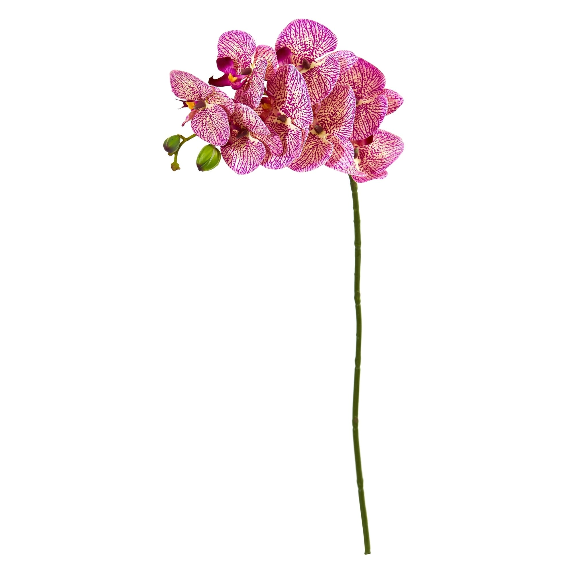 28 Orchid Phalaenopsis Artificial Flower Stem (Set of 6)