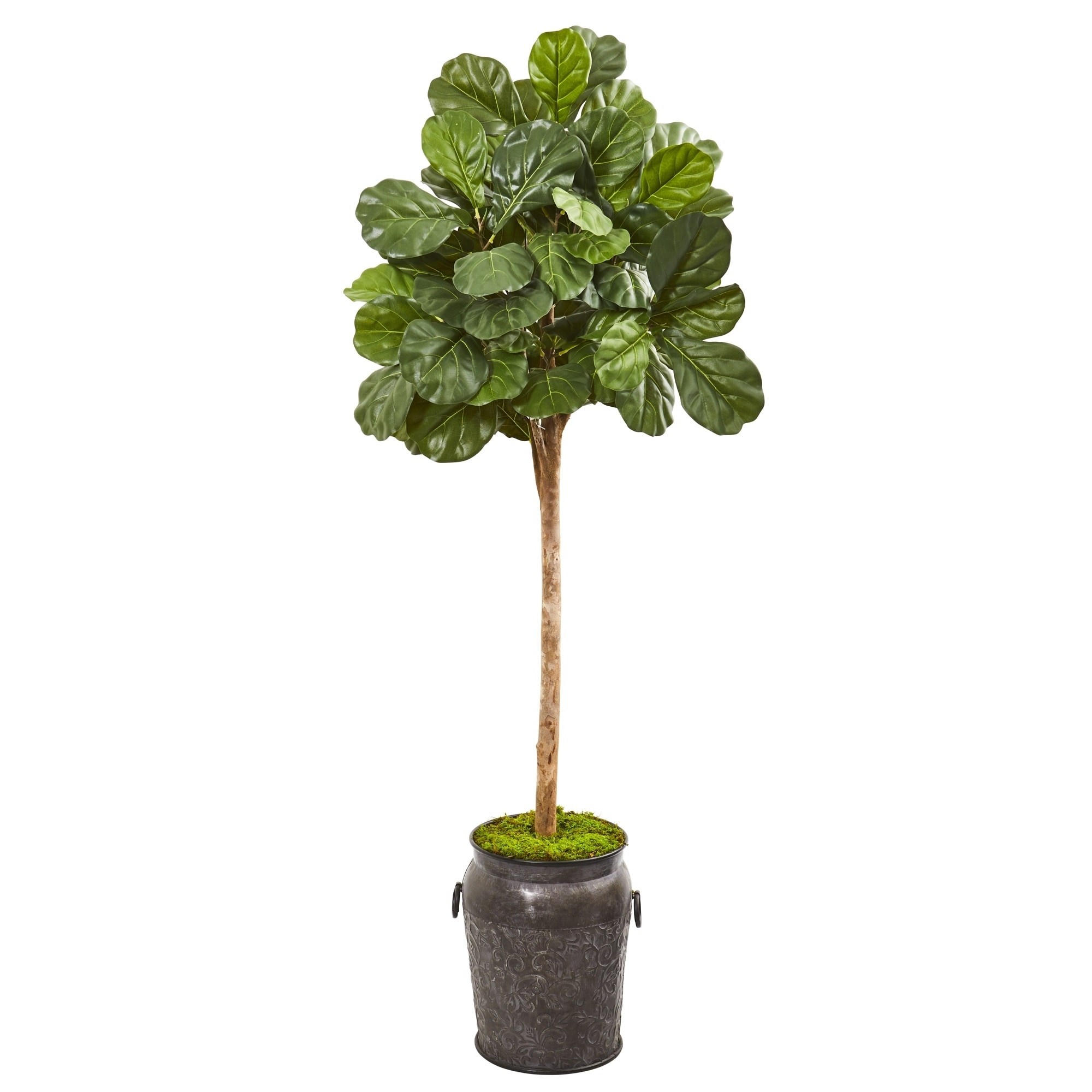 6 Fiddle Leaf Fig Artificial Tree in Metal Planter