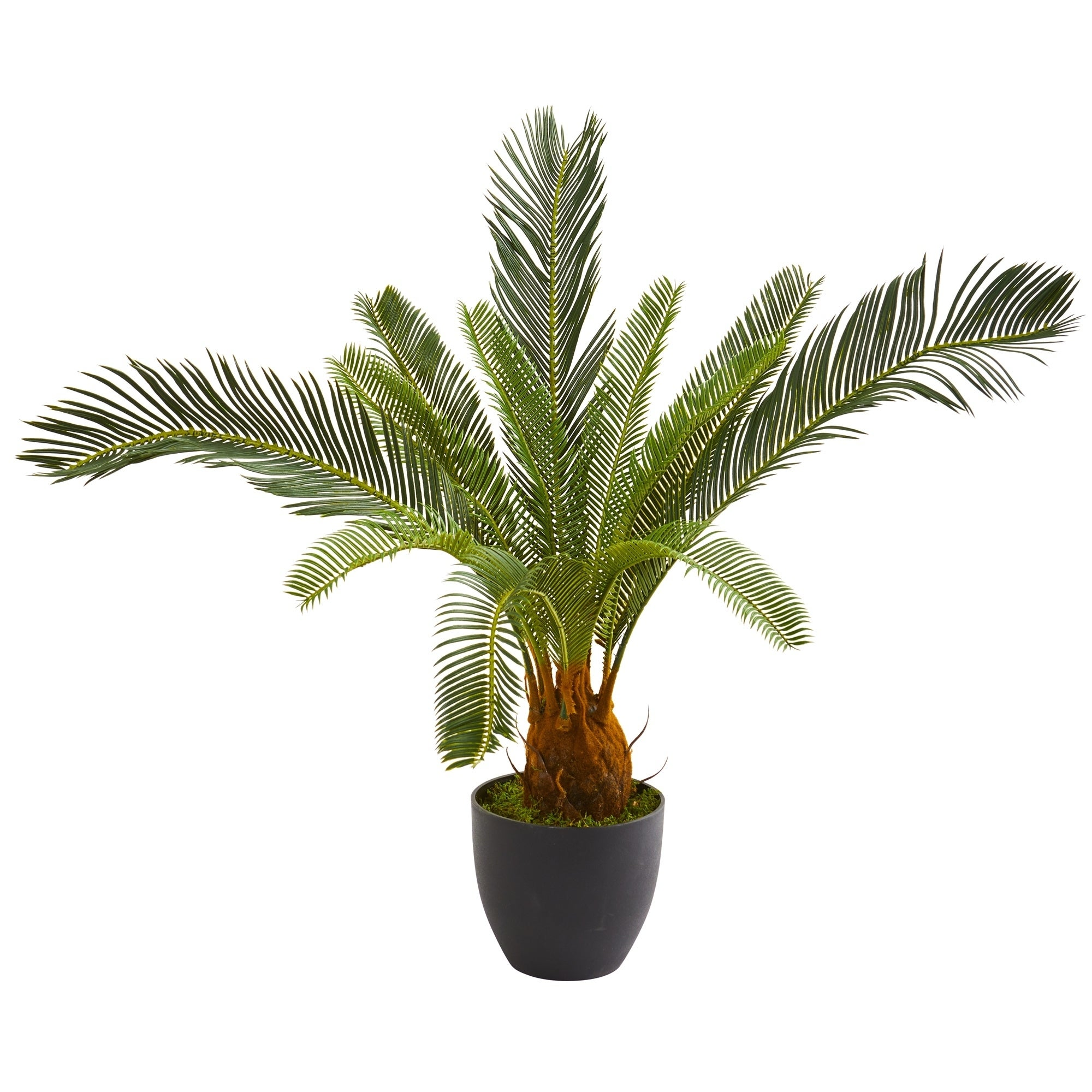 32 Cycas Artificial Plant