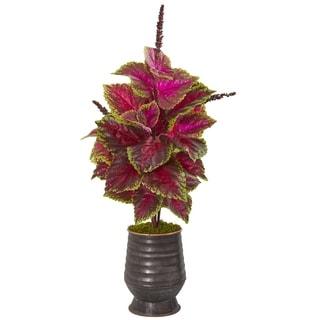 "32"" Coleus Artificial Plant in Decorative Planter"