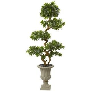 6' Pittosporum Artificial Tree in Urn UV Resistant (Indoor/Outdoor)