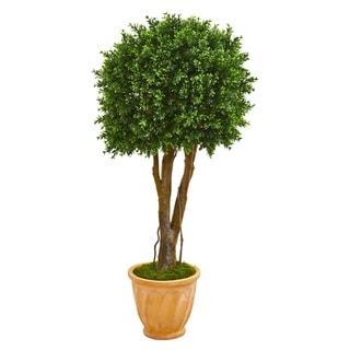 """50"""" Boxwood Artificial Topiary Tree in Terra-Cotta Planter UV Resistant (Indoor/Outdoor)"""