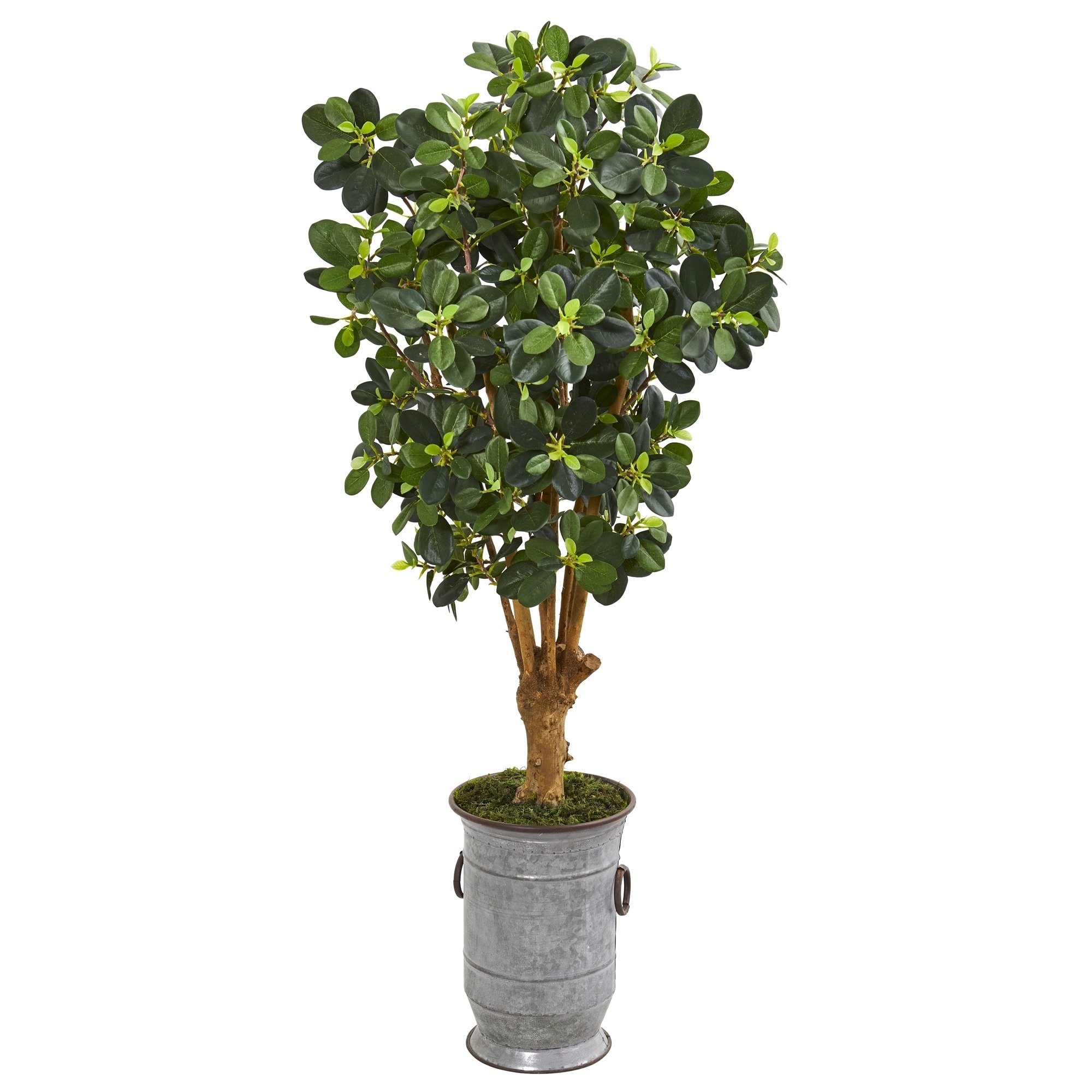 46 Panda Artificial Ficus Tree in Metal Urn