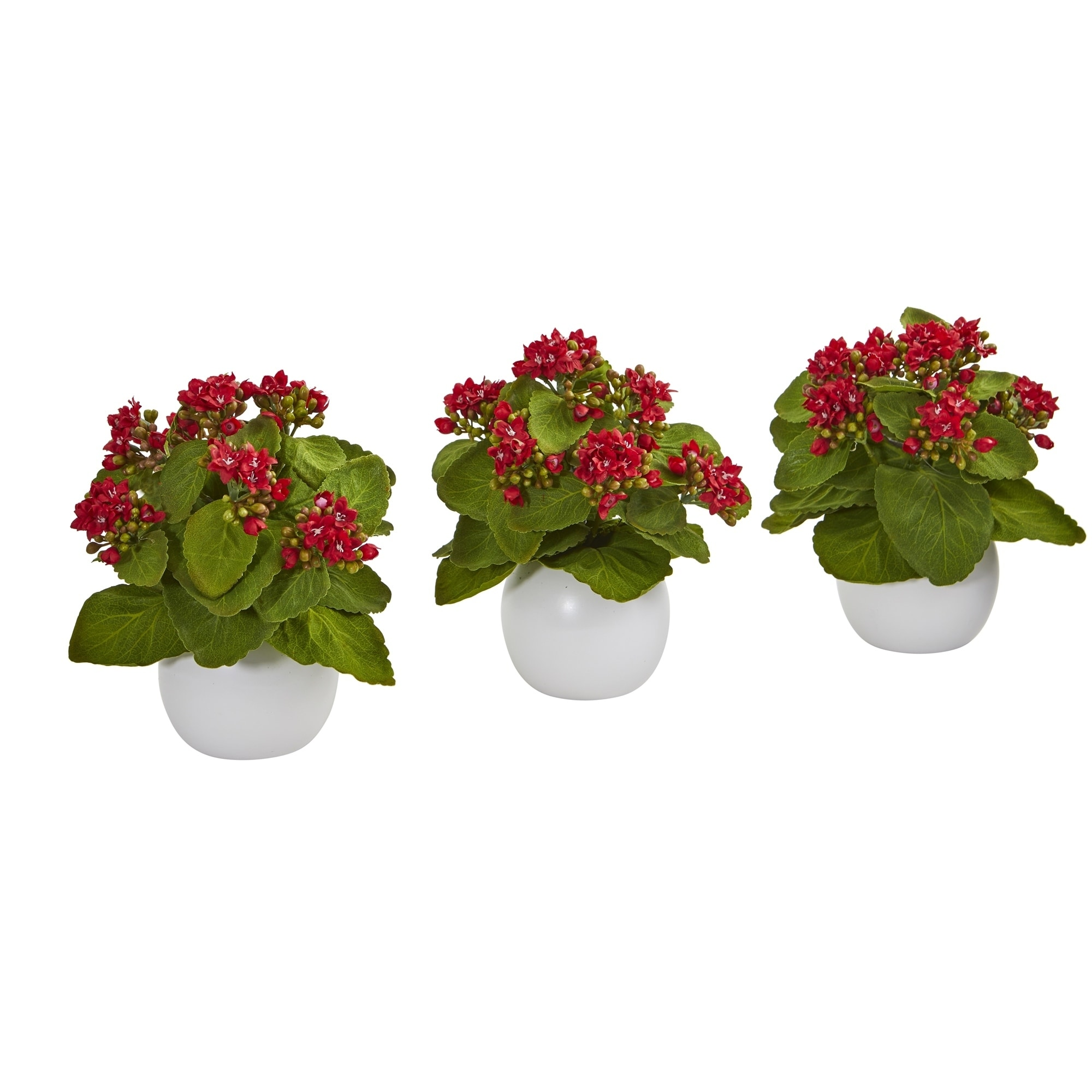 8 Kalanchoe Artificial Plant in White Vase (Set of 3)