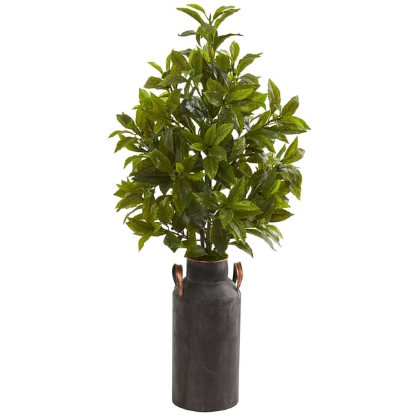 "32"" Coffee Leaf Artificial Plant in Decorative Canister (Real Touch)"