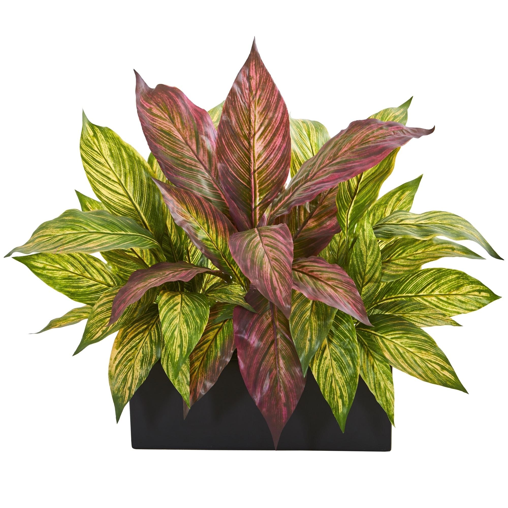 16 Musa Leaf Artificial Plant in Black Planter