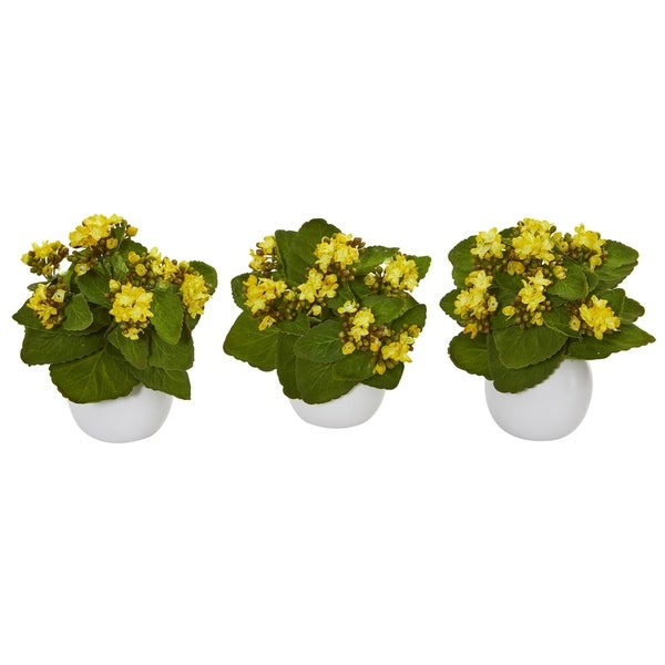 """8"""" Kalanchoe Artificial Plant in White Vase (Set of 3)"""