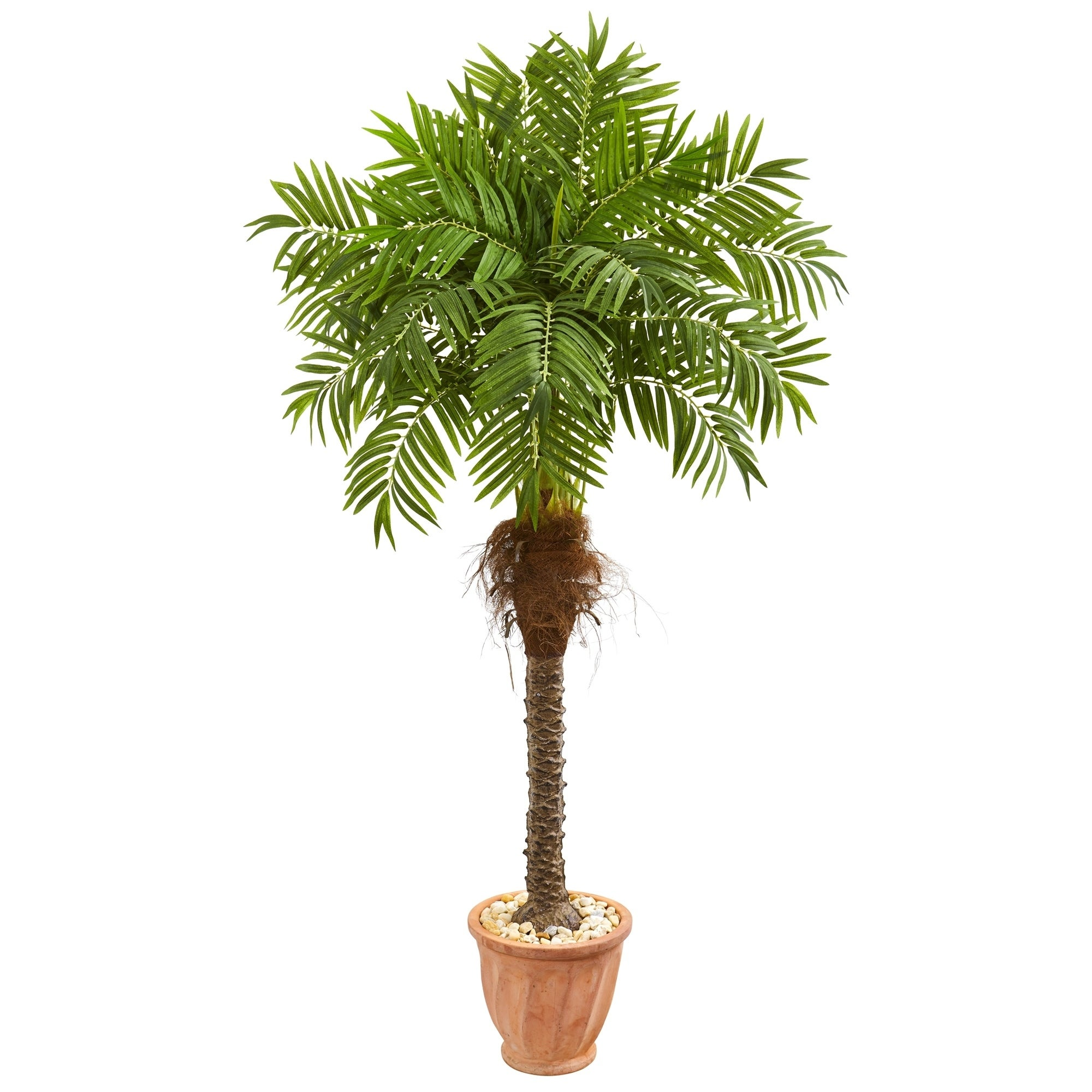 68 Robellini Palm Artificial Tree in Terra Cotta Planter