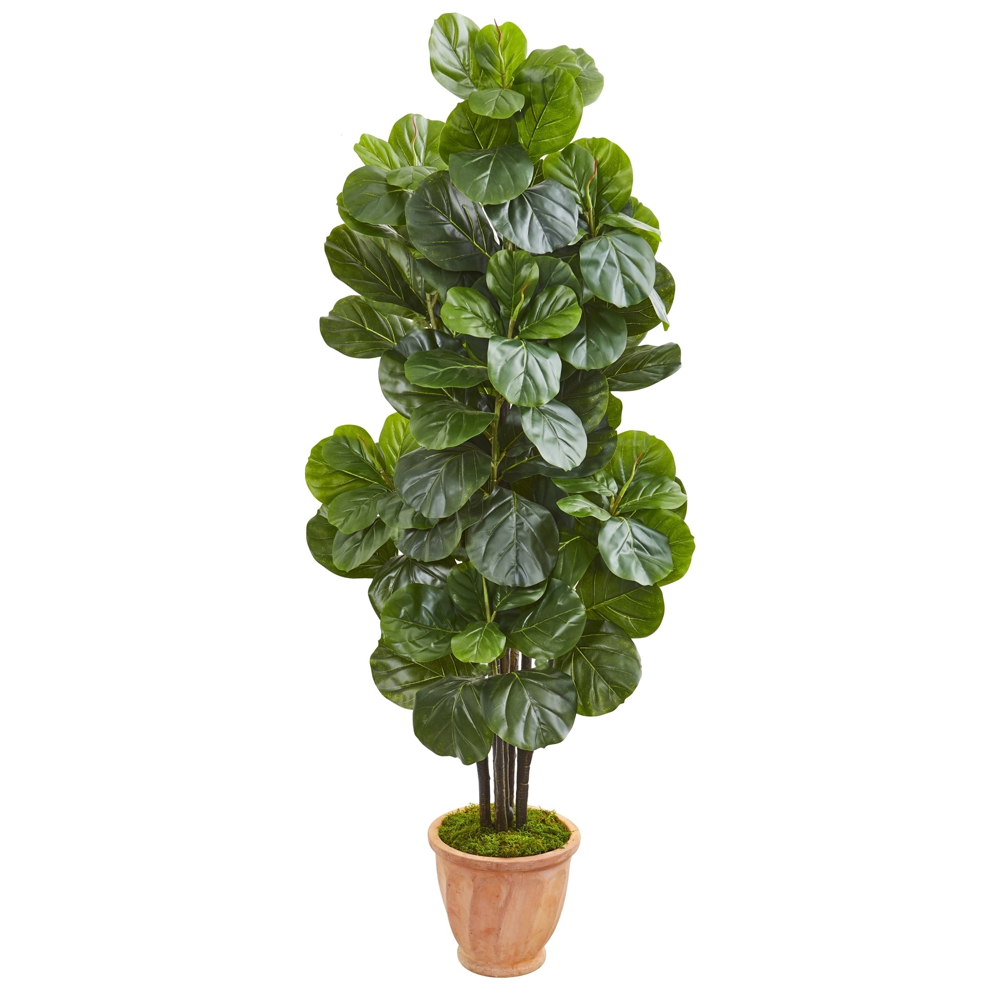 67 Fiddle Leaf Fig Artificial Tree in Terracotta Planter