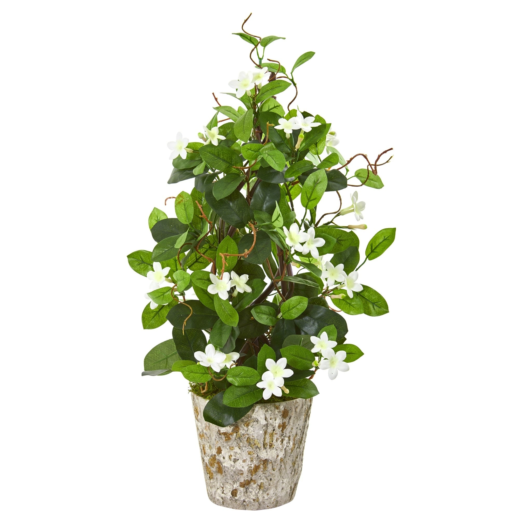 25 Stephanotis Artificial Climbing Plant in Weathered Planter