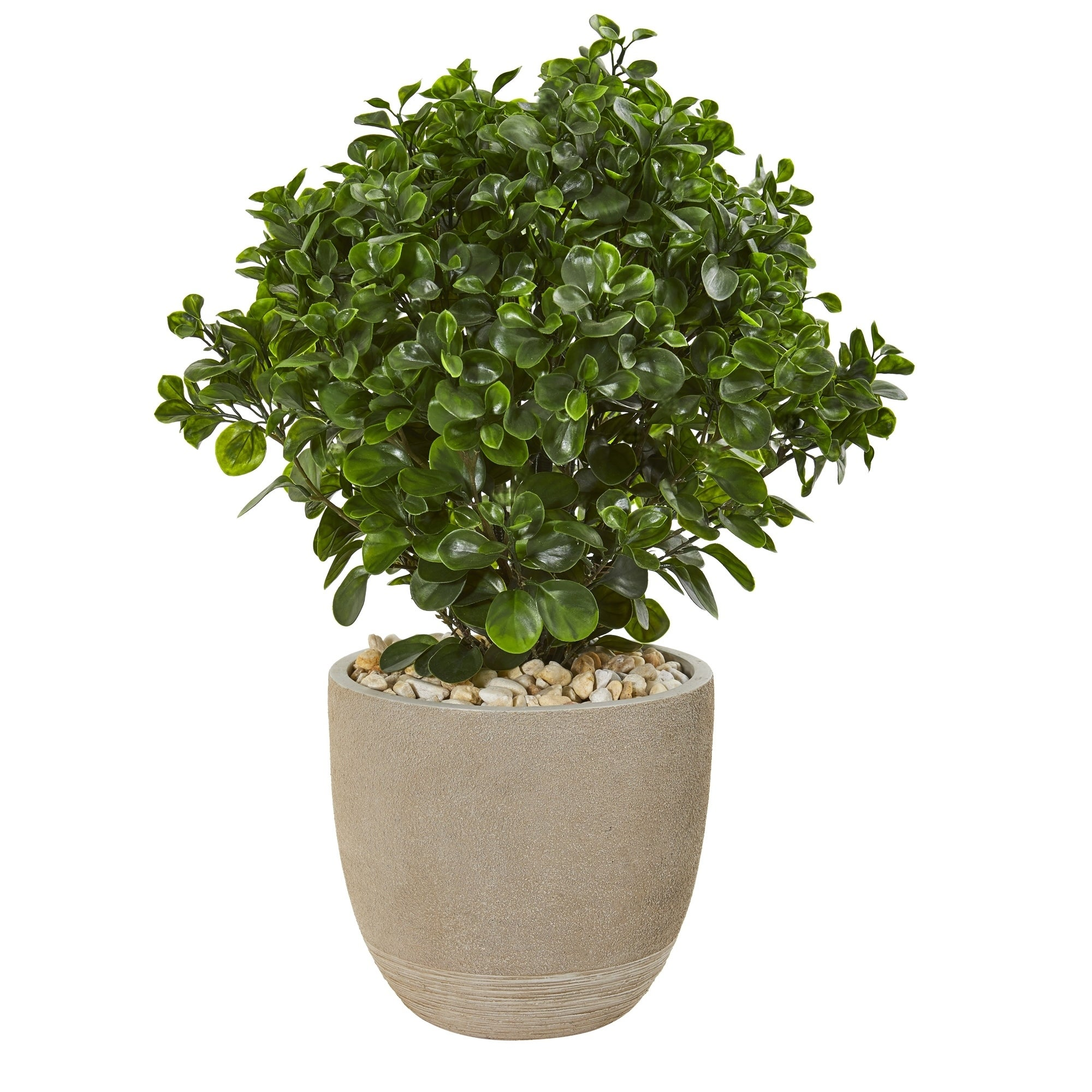30 Peperomia Artificial Plant in Sand Stone Planter UV Resistant (Indoor/Outdoor)