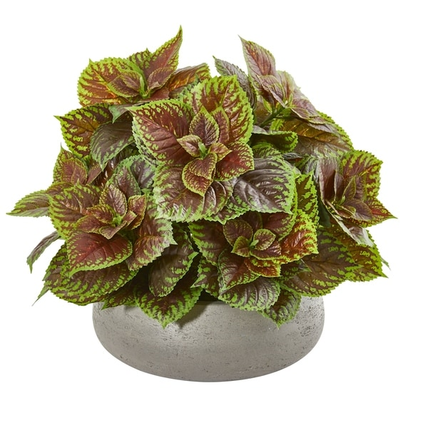 "16"" Coleus Artificial Plant in Decorative Planter (Real Touch)"
