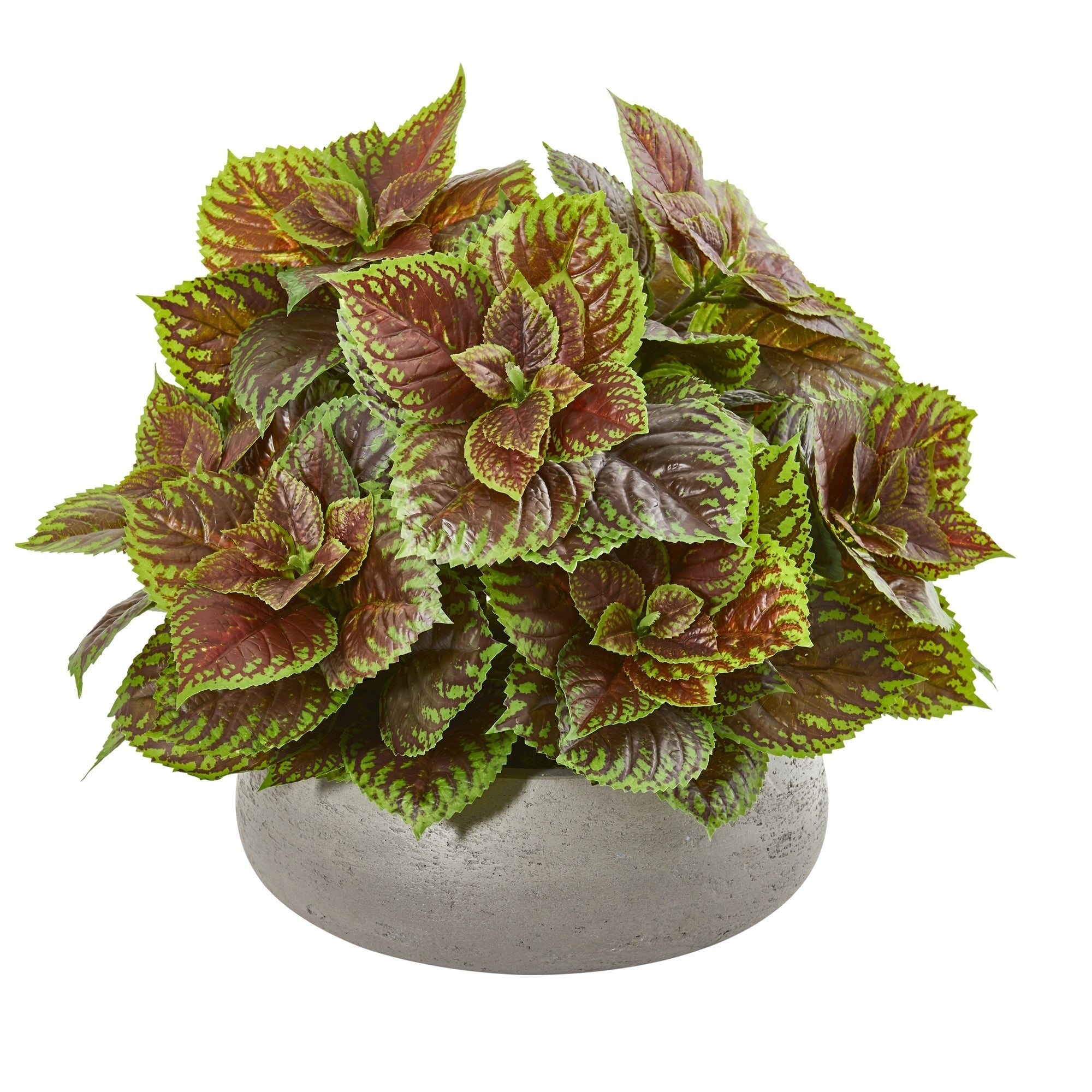 16 Coleus Artificial Plant in Decorative Planter (Real Touch)