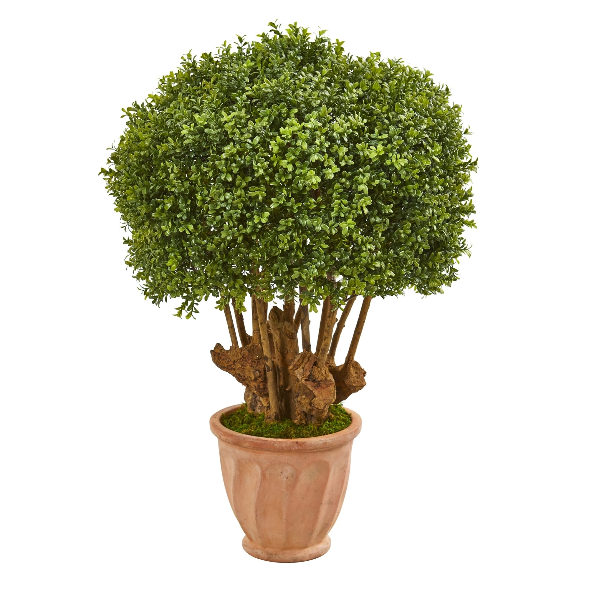 39 Boxwood Artificial Topiary Tree in Terracotta Planter (Indoor/Outdoor)