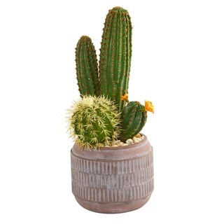 "19"" Cactus Artificial Plant in Decorative Planter"