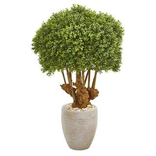 """41"""" Boxwood Artificial Topiary Tree in Sandstone Planter (Indoor/Outdoor)"""