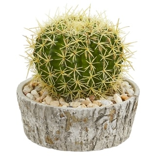 Cactus Artificial Plant in Weathered Oak Planter