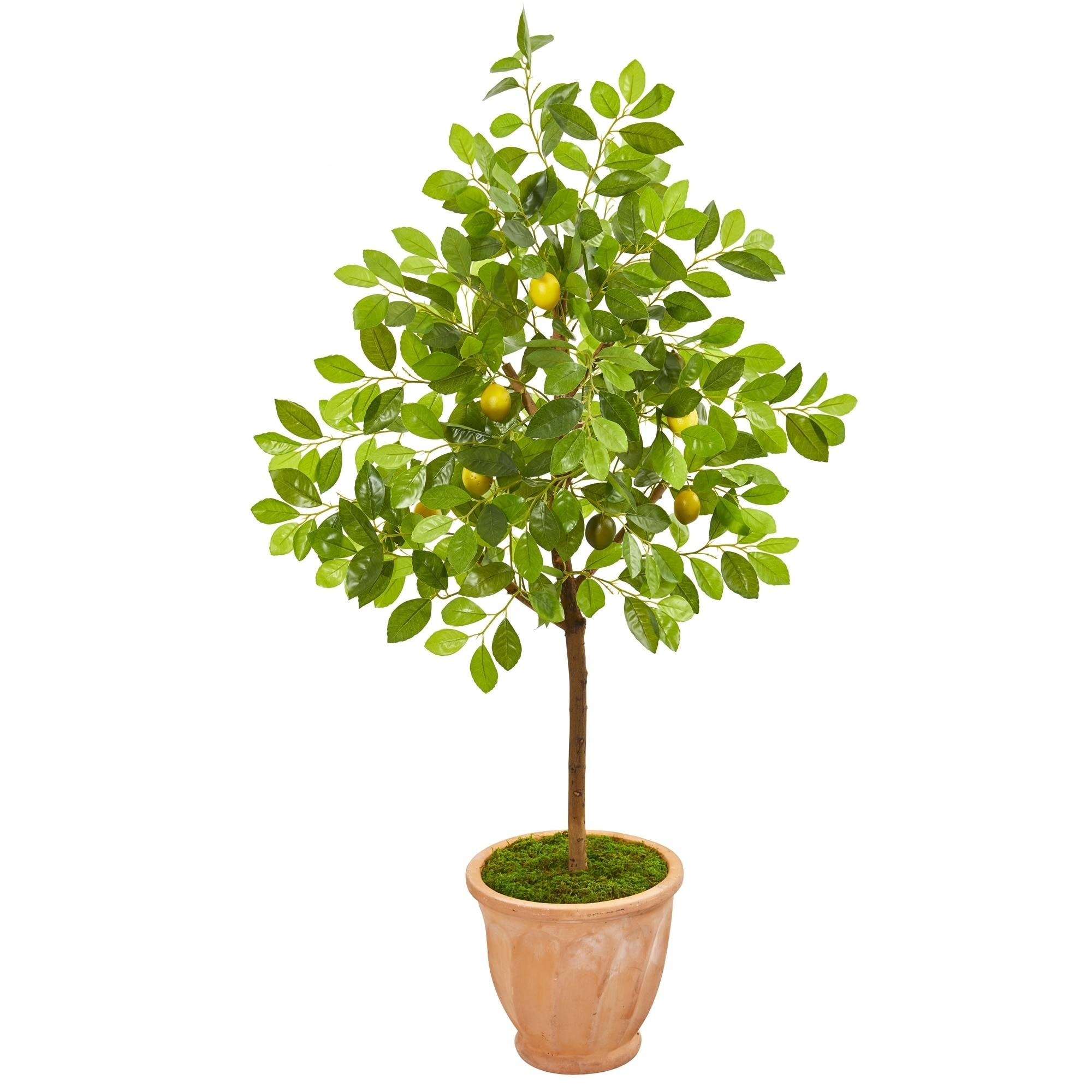 55 Lemon Artificial Tree in Terra Cotta Planter