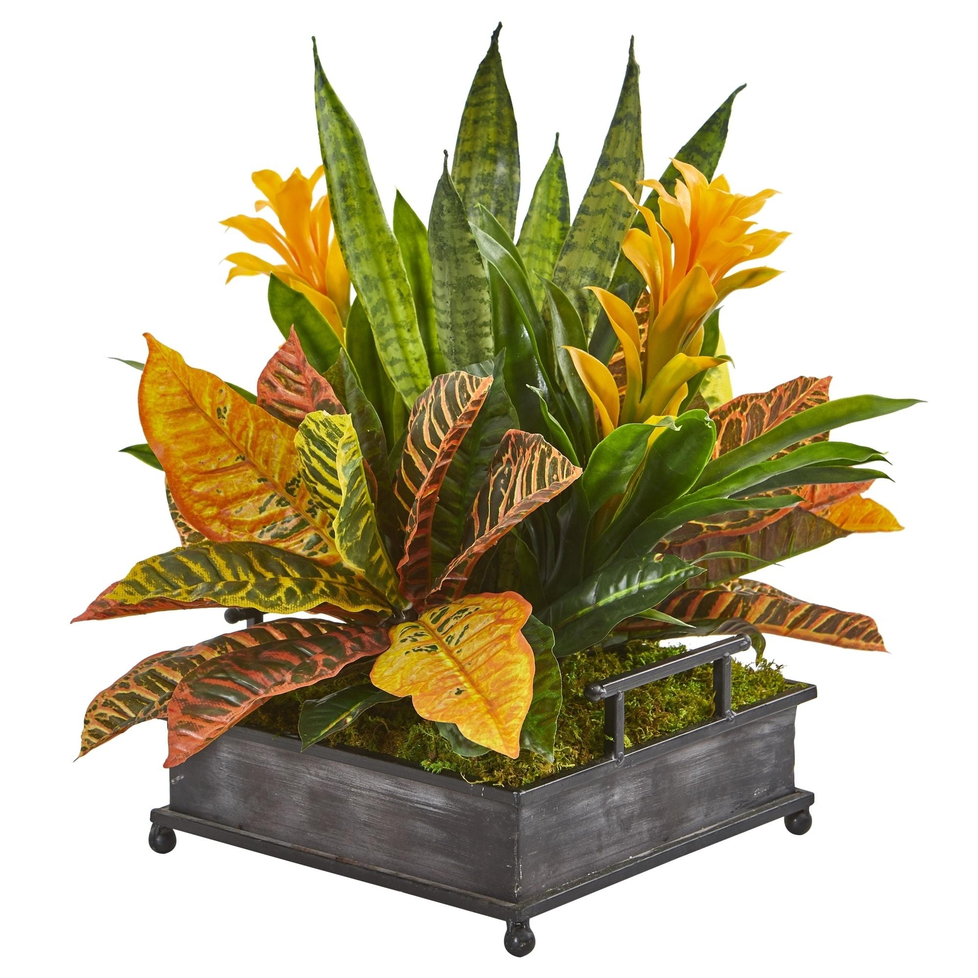 18 Bromeliad, Croton and Sansevieria Artificial Plant in Decorative Tray