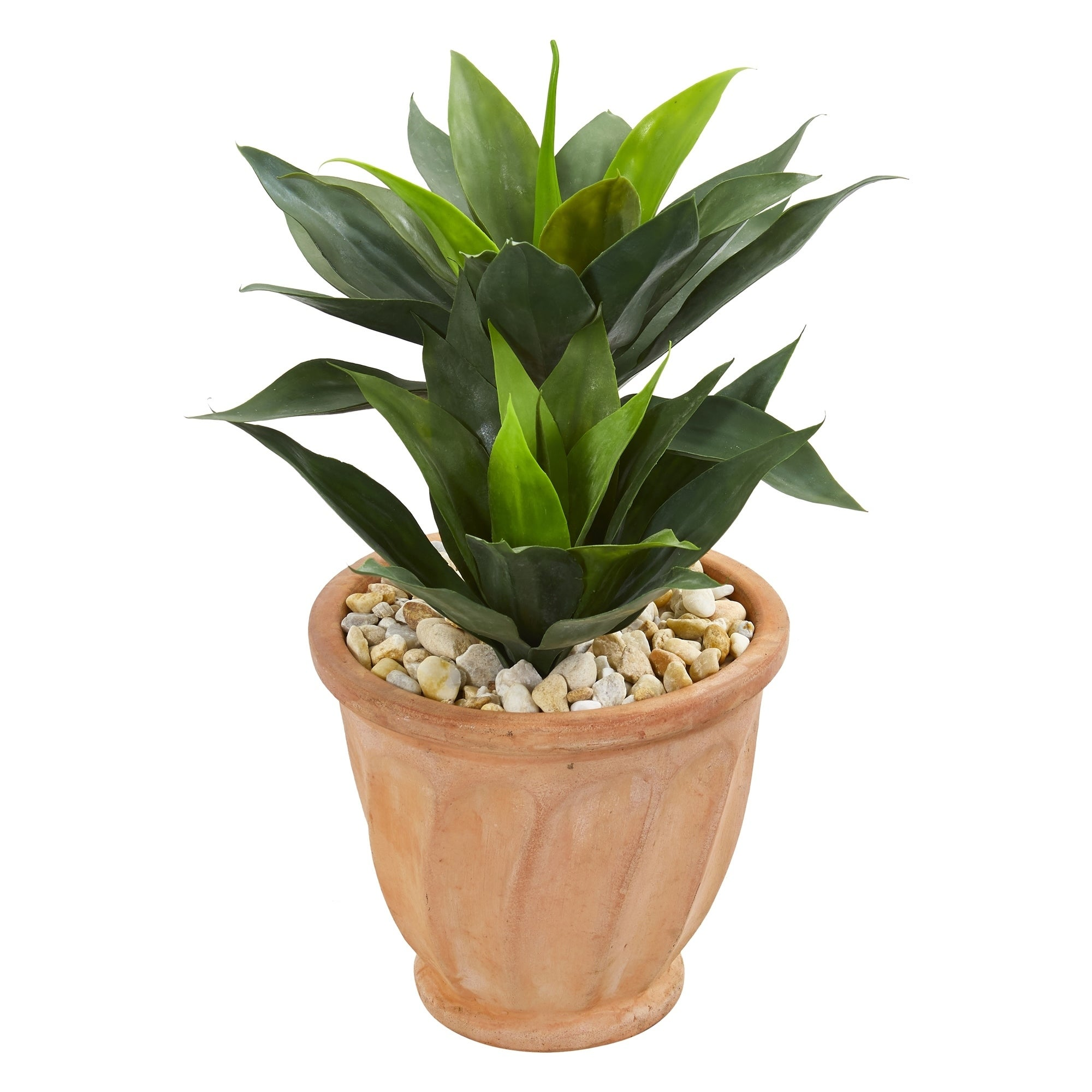 24 Double Agave Artificial Plant in Terra Cotta Planter