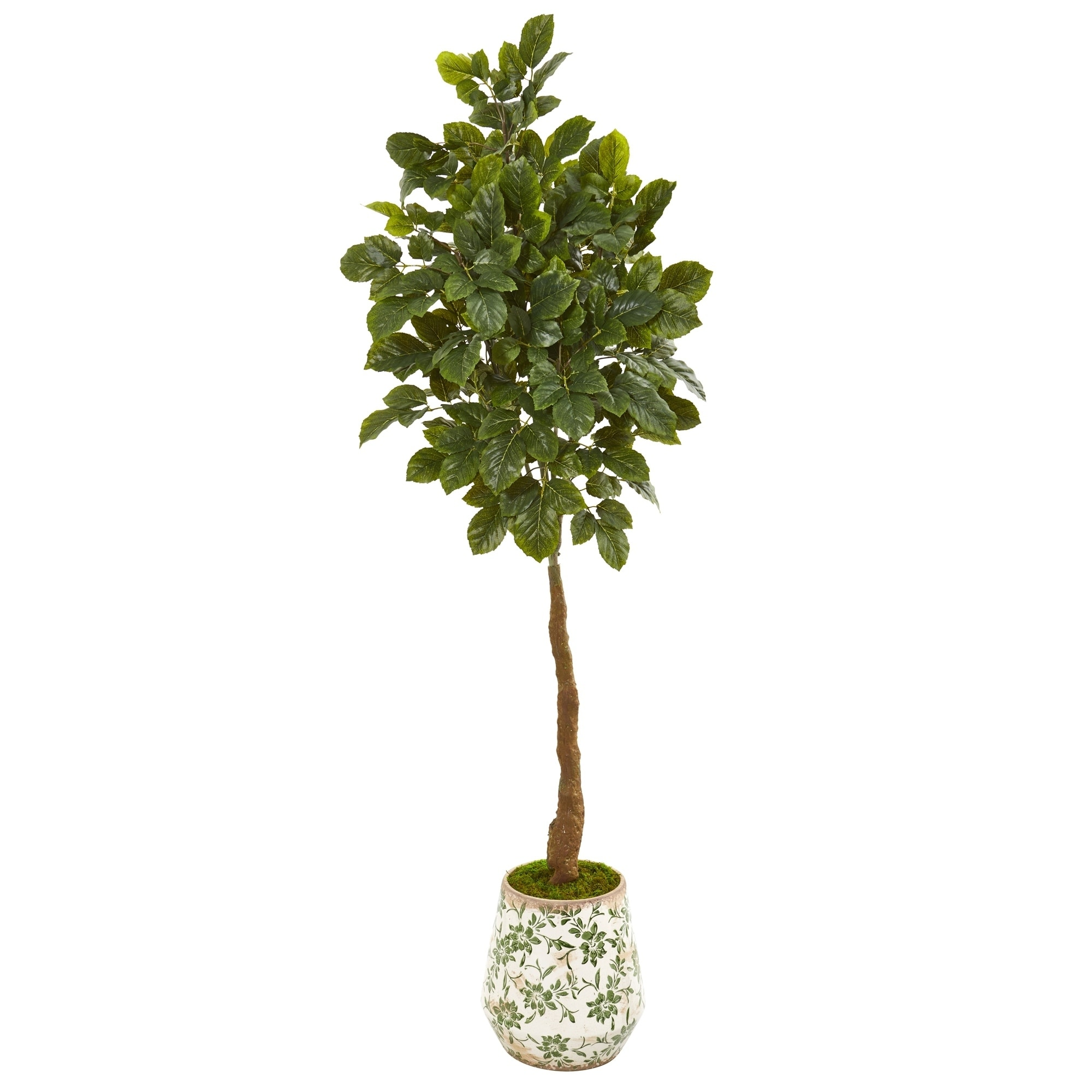 70 Beech Leaf Artificial Tree in Designer Planter