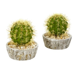 "7"" Cactus Artificial Plant in Weathered Planter (Set of 2)"