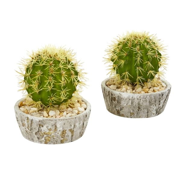 """7"""" Cactus Artificial Plant in Weathered Planter (Set of 2)"""