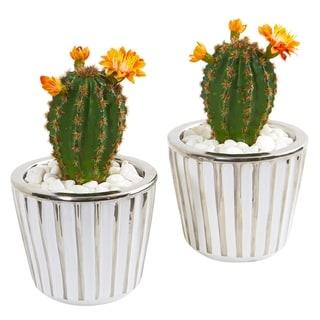 "8"" Flowering Cactus Artificial Plant in Decorative Planter (Set of 2)"