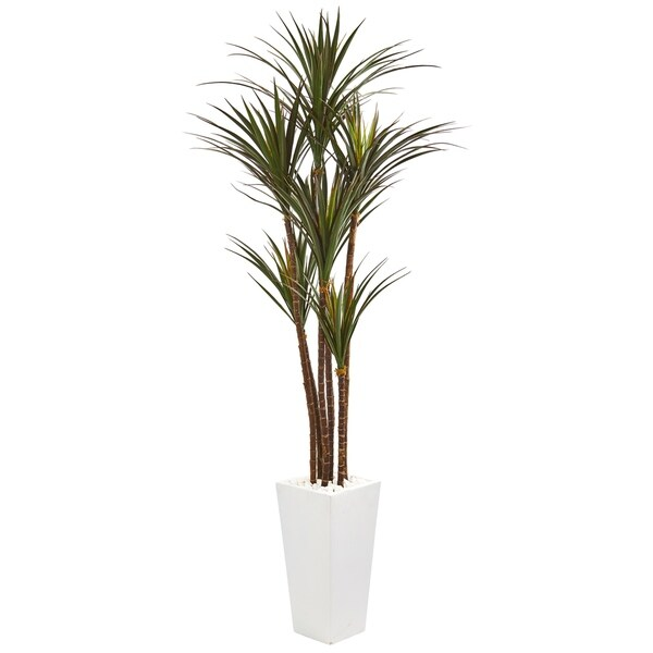 6.5' Giant Yucca Artificial Tree in White Planter UV Resistant