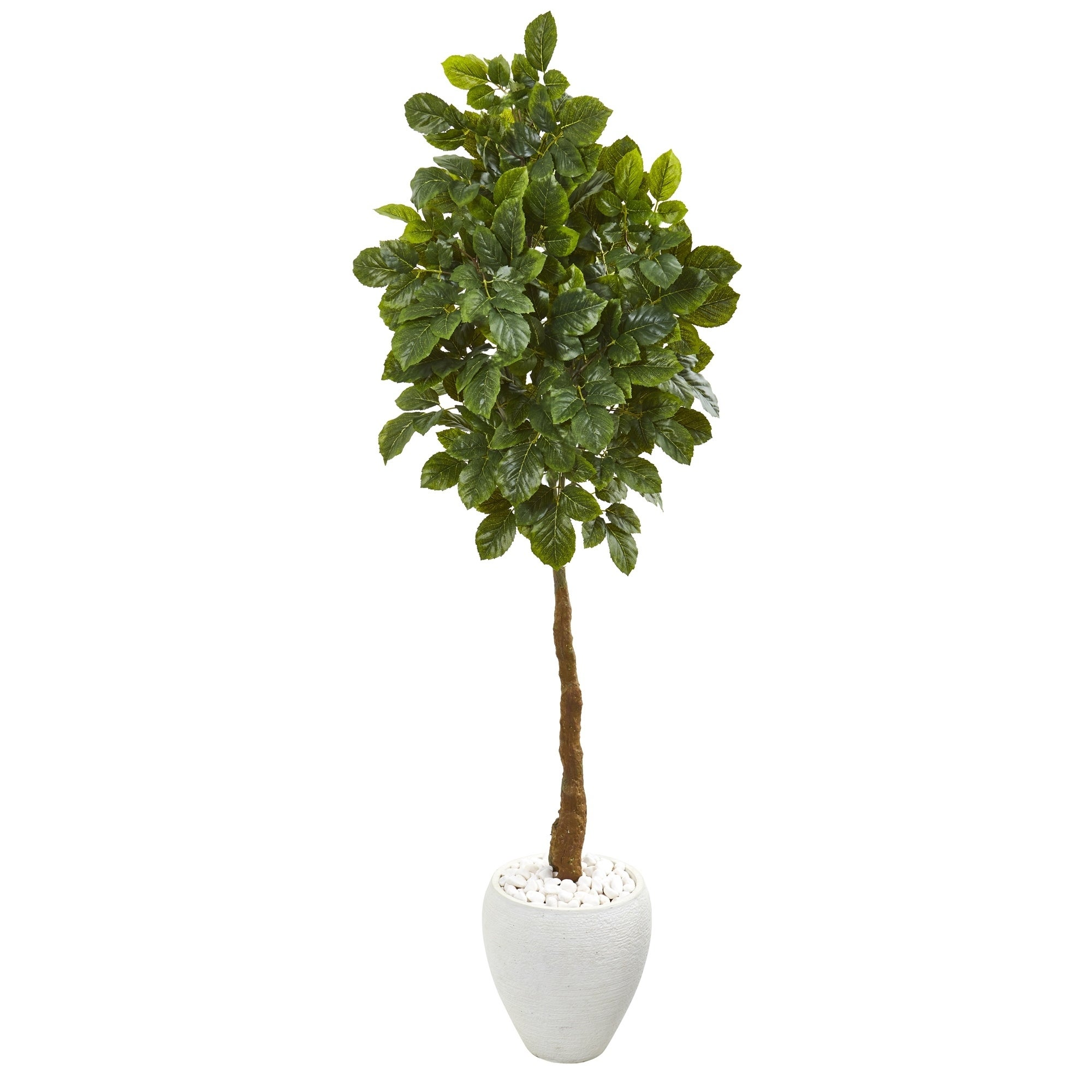 69 Beech Leaf Artificial Tree in White Planter