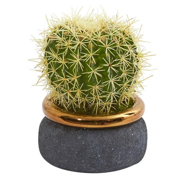 Cactus Artificial Plant in Designer Bowl