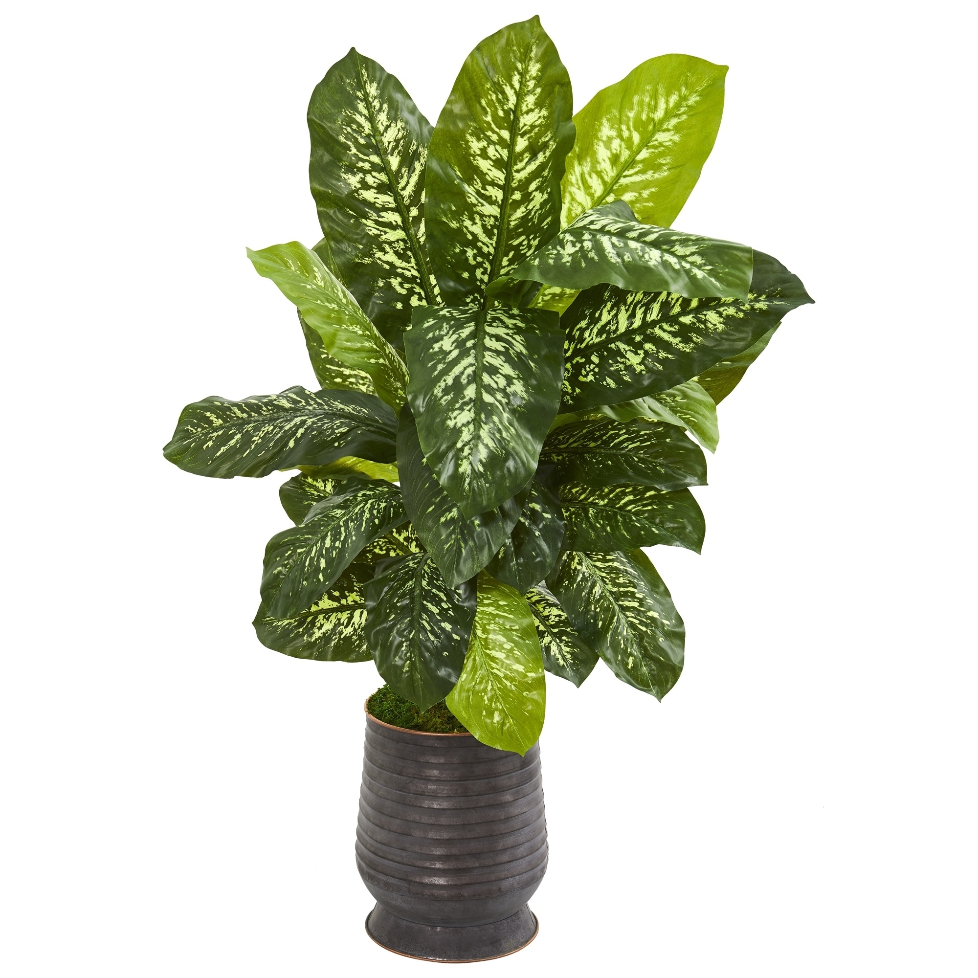 4 Dieffenbachia Artificial Plant in Ribbed Metal Planter (Real Touch)