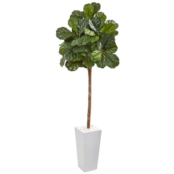 """75"""" Fiddle Leaf Fig Artificial Tree in White Planter"""