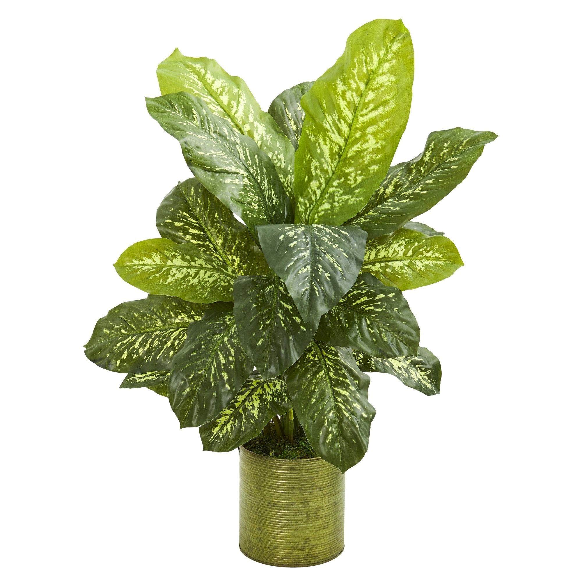 36 Dieffenbachia Artificial Plant in Green Planter (Real Touch)