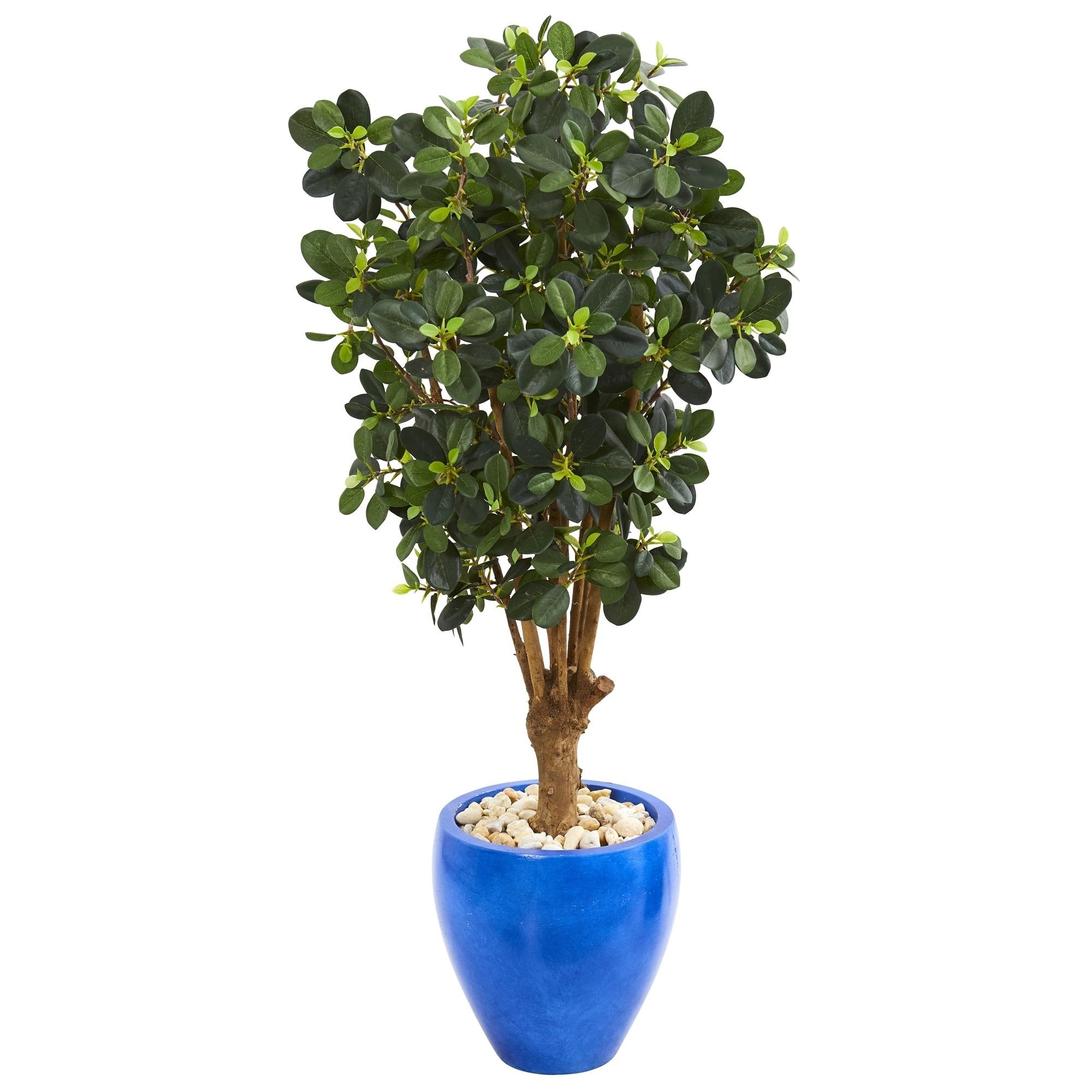50 Panda Ficus Artificial Tree in Blue Planter