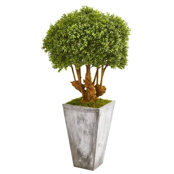 "51"" Boxwood Artificial Topiary Tree in Cement Planter (Indoor/Outdoor)"