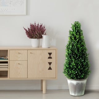 """Potted Preserved Boxwood Cone Topiary 28"""""""