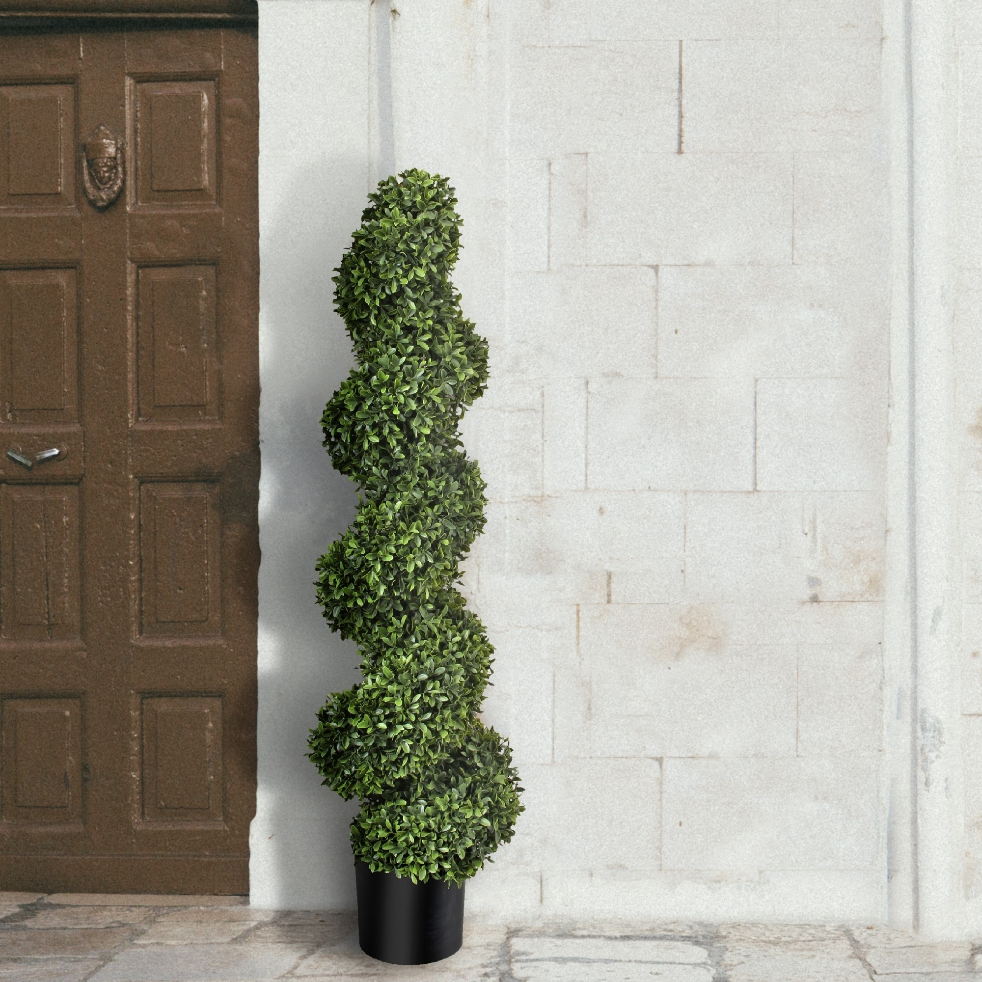 American Boxwood Spiral Topiary 47 - Plastic