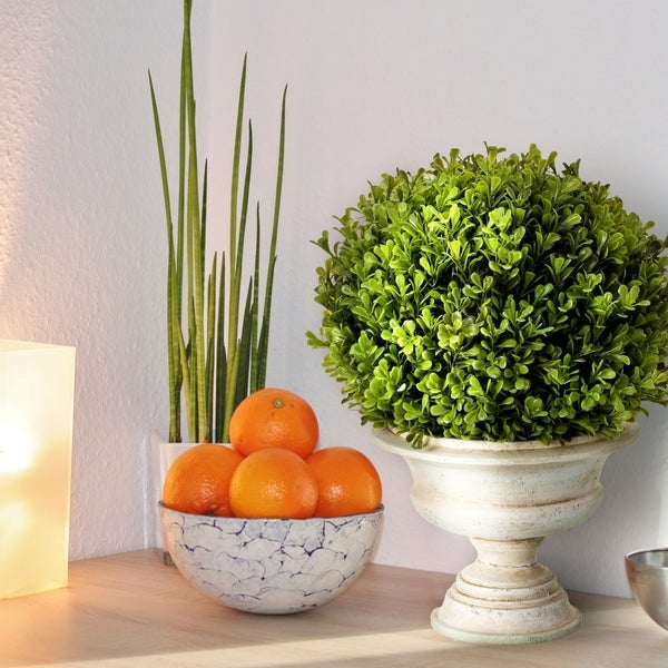 """Spring Boxwood Ball in Urn 16"""" - Plastic and Cement"""