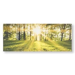 Tranquil Forest Fields Canvas Wall Art - Green