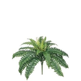"""Boston Fern Plant Stem - Green - 22""""L x 22""""W x 18""""H"""